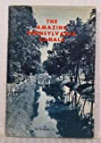 img - for The Amazing Pennsylvania Canals book / textbook / text book