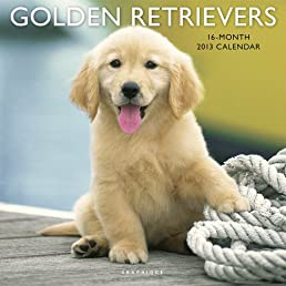 Golden Retrievers 2013 Calendars (Multilingual Edition)