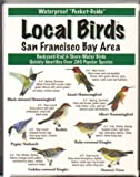 img - for Local Birds of the San Francisco Bay Area book / textbook / text book