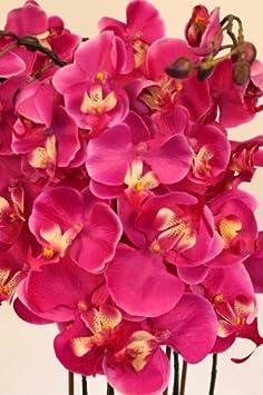 plante artificielle en pot grande orchid e. Black Bedroom Furniture Sets. Home Design Ideas