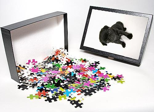 Photo Jigsaw Puzzle Of Dog. Black Pug Puppy (6 Weeks Old) front-894612