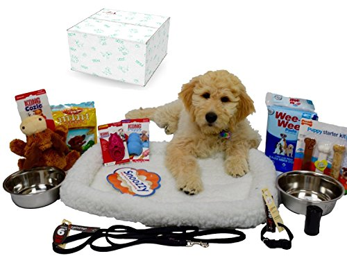 Puppy Starter Kit Bundle Deluxe Edition in Branded Gift Box - Everything You Need, All Top Name, 5 Star Brands! 6 foot Leash (1/2