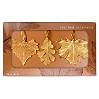 Real Leaf Ornaments, Set of 3 Gold Ornaments - Cottonwood, Lacy Oak, and Sugar Maple