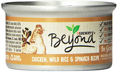 Purina Beyond Gravy Chicken, Wild Rice & Spinach Recipe Wet Cat Food