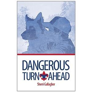 Dangerous Turn Ahead