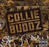 Blind To You - Collie Buds