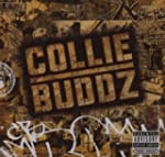 Buddz,Collie