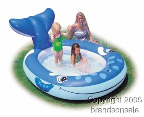 Pool Slides:Whale squirt Inflatable Kiddie swimming pool Images