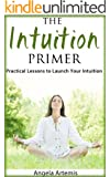 The Intuition Primer: Practical Lessons to Launch Your Intuition (English Edition)