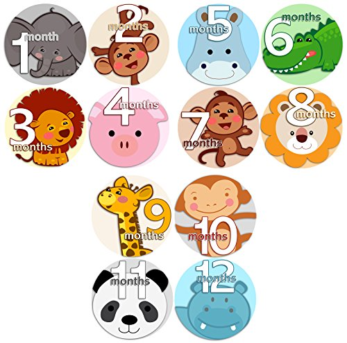 ANIMALS FACES 2 Baby Boy Girl Monthly Onesie Stickers Baby Month Onesie Stickers Baby Shower Gift Photo Shower Stickers, safari jungle monkey hippo cat dog lion tiger zebra