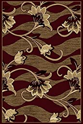 Persian Weavers 8 x 11 Hampton Exotic Chenille Dimensional Rug - Burgundy & Chocolate