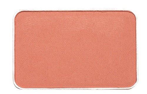 アムリターラ グレイシャスクランベリーチーク レフィル C1オレンジ