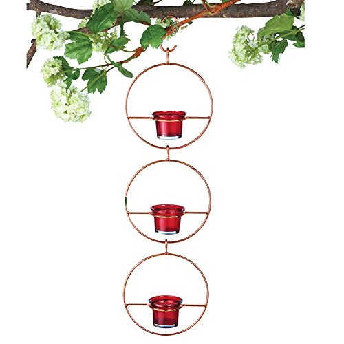 Hanging Glass Unique Hummingbird Feeder Perfect Gift