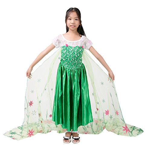 Amstt New 2015 Princess Elsa Fever Party Dress Costumes With Flower Capes F1503