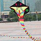 Hengda Kite 15m Snake Kite Cobra Kites Soft Outdoor Kite with Flying Line Easy to Fly