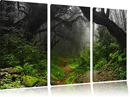 mystic-rainforest-nero-bianco-3-pezzi-picture-tela-120x80-immagine-sulla-tela-xxl-enormi-immagini-co