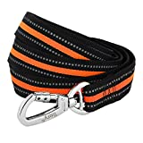 Dog Leash, Itery Reflective Dog Leash Pet Safety Walking and Trainning Leash 6 Feet Length 1 Inch Width (Orange)