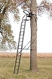 Big Game Skybox Deluxe Treestand (20-Feet)
