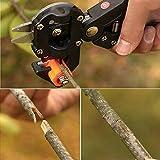 [Free Shipping] Garden Fruit Tree Pro Pruning Shears Scissor Grafting Cutting Tools Suit // Jardín de árboles frutales tijeras de podar pro tijera injerto corte traje de herramientas