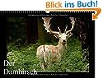Der Damhirsch (Wandkalender 2015 DIN...