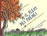 echange, troc Zaü, Jean-Marie Henry - Il pleut des poèmes : Anthologie de poèmes minuscules