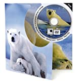 Polar Bear DVD Theme Card - Blank Greetings Card For Any Occasion
