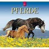 """Pferde 2010von """"Sabine Stuewer"""""""