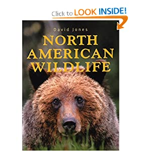 51F1YV2TRJL. BO2,204,203,200 PIsitb sticker arrow click,TopRight,35, 76 AA300 SH20 OU01  North American Wildlife (Paperback)