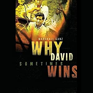 Why David Sometimes Wins Audiobook