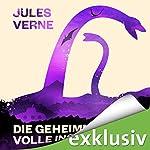 Die geheimnisvolle Insel   Jules Verne