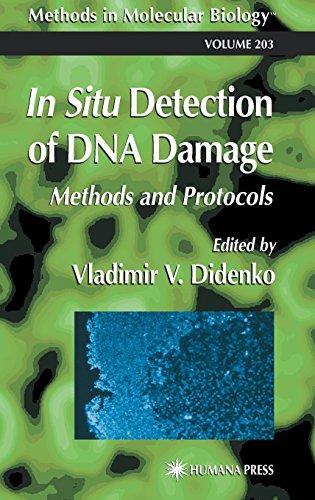 In Situ Detection Of Dna Damage: Methods And Protocols (Methods In Molecular Biology)