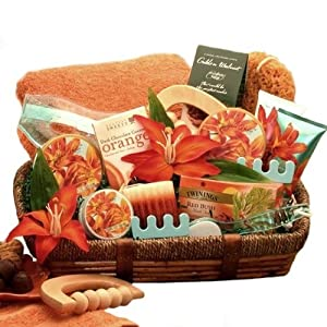 Healing Luxuries Bath and Body Spa Gift Basket for Her -Mothers Day Gift Idea for Women by Organic Stores