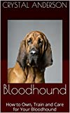 Bloodhound: How to Own, Train and Care for Your Bloodhound