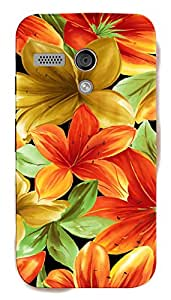TrilMil Printed Designer Mobile Case Back Cover For Motorola Moto G (1st Generation), Moto G1, Moto G (1st Gen) XT1032, Moto G (First Gen)