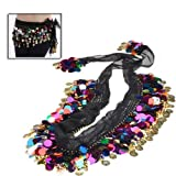 niceEshop(TM) Fashion Shining Sequins Coin Belly Dance Hip Scarf-Multi Color