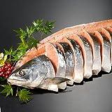 サーモン専門店岩松 天然時鮭一本物 姿切り【約2.3キロ】化粧箱入