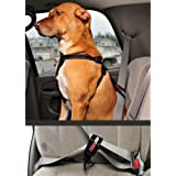 EzyDog Seat Belt Restraint for Dogs