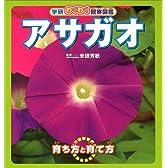 アサガオ (学研わくわく観察図鑑)