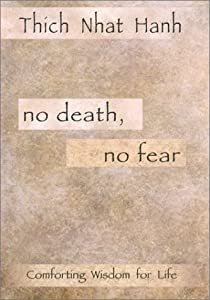 "Cover of ""No Death, No Fear"""