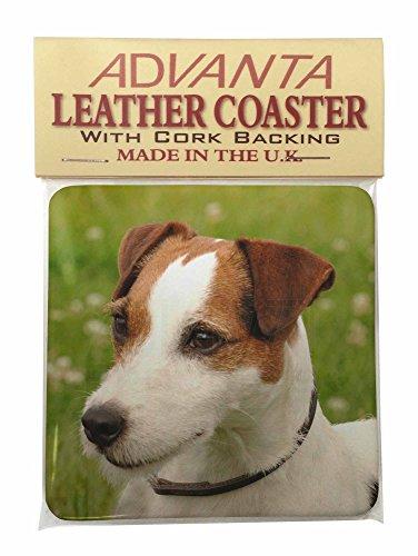 Jack-Russell- Terrier-Hund Single Coaster Weihnachtsstrumpf-Füller Geschenk