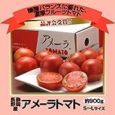 静岡・長野産 アメーラトマト 1箱 S~Lサイズ 約900g ※冷蔵