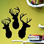 Coavas Antelope Deer Wild-life Animal...