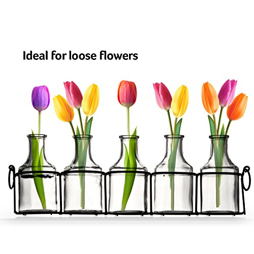 Set Of 5 Clear Glass Mini Vases In Black Metal Rack 5 Inches Decorative Centerpiece For Flower