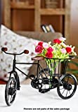 EtsiBitsi Flower Vase, Cycle Rickshaw Showpiece, Flower Vase (Big Size) for Home Decor and Gift_EB_Vase_001