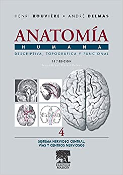 Anatomia Humana Sistema Nervioso Central (Spanish Edition) (Spanish