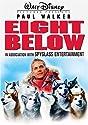 Eight Below (WS) [DVD]<br>$309.00
