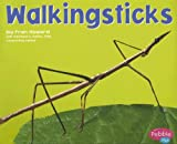 img - for Walkingsticks (Pebble Plus, Bugs, Bugs, Bugs) book / textbook / text book