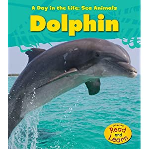 Dolphin (A Day in the Life: Sea Animals)