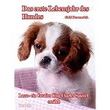 """Das erste Lebensjahr des Hundes Lasse - ein Cavalier King Charles Spaniel erz�hlt: Das Buch vom Hund - Welpe und Junghundvon """"Gabi Bewernick"""""""