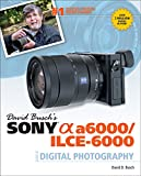 img - for David Busch's Sony Alpha a6000/ILCE-6000 Guide to Digital Photography book / textbook / text book